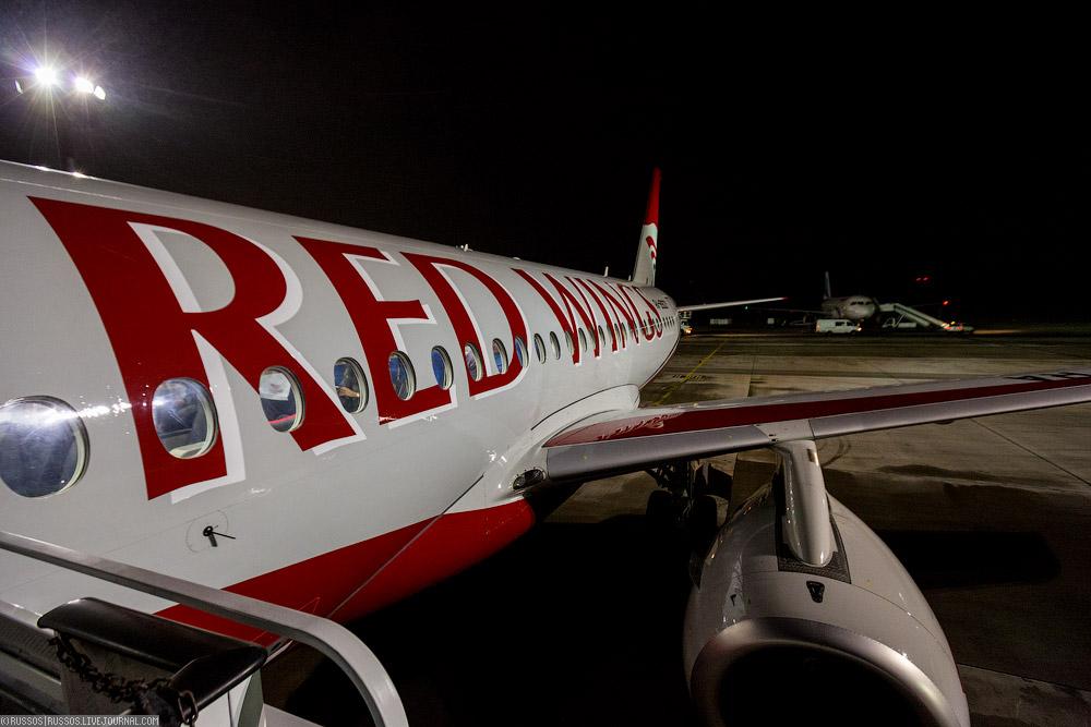 redwings-01.jpg