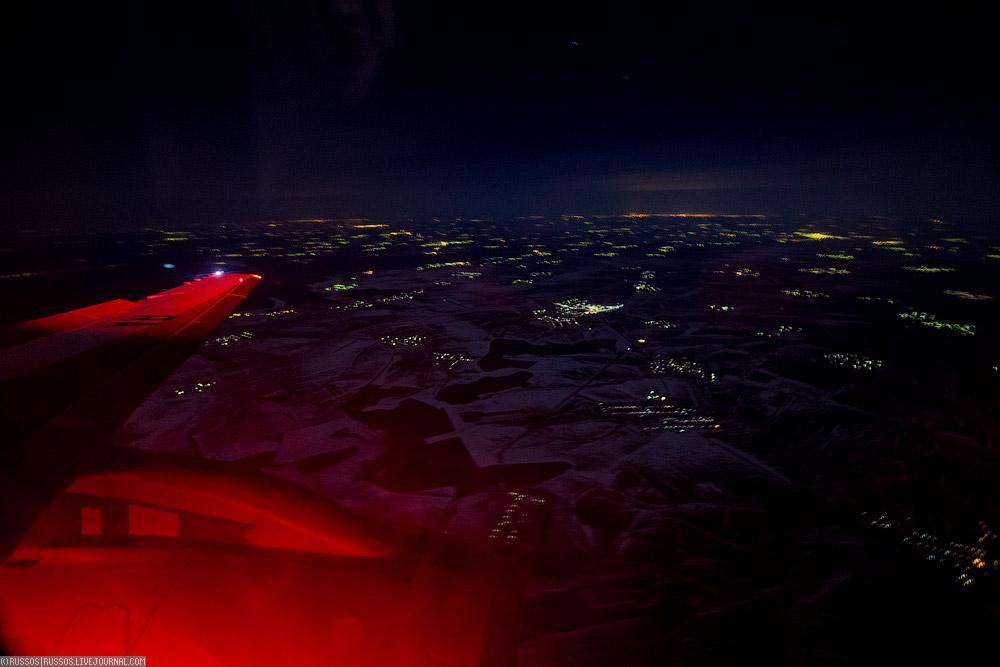 redwings-10.jpg