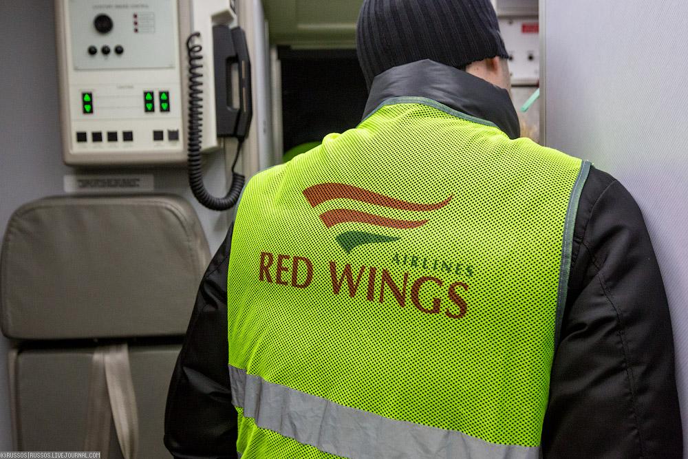 redwings-12.jpg