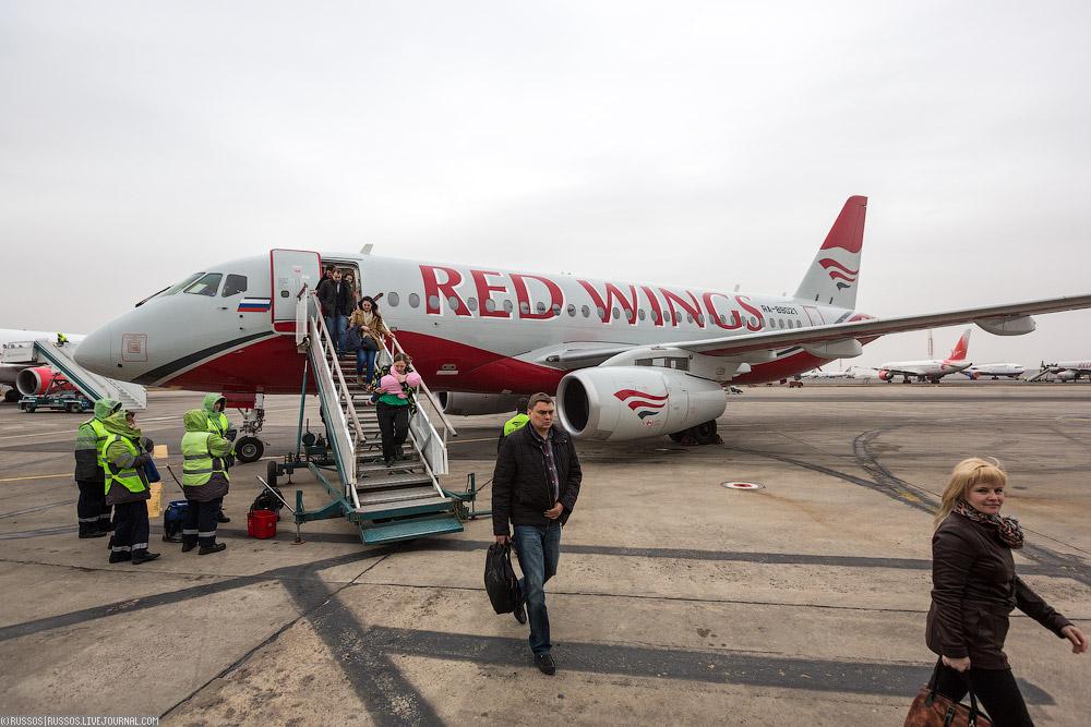 redwings-38.jpg
