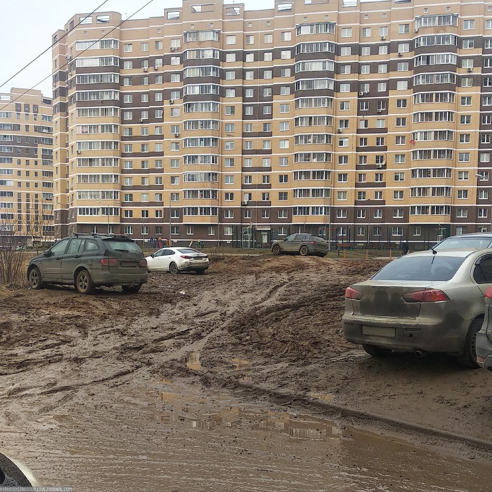 Свиноферма в Пушкино